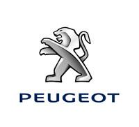 Peugeot Wind Deflectors